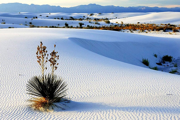 dunas-yeso-coahuila.png
